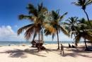 Une liaison Mont-Joli- Punta Cana