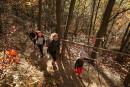 Mont Saint-Grégoire: grimper l'autre montérégienne