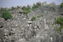 Shilin, labyrinthique forêt de pierres