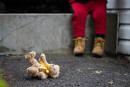 Centre jeunesse de Montréal: le seul foyer mère-enfant ferme