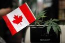 Partage fiscal de la vente de cannabis: Québec toujours insatisfait
