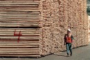 Bois d'oeuvre: le Canada évoque un retrait de sa plainte à l'OMC en cas d'accord