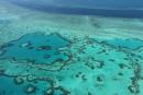 Australie: un coeur de récifs résiste au blanchissement