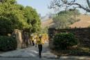 Californie: l'incendie de Bel Air causé par un campement de sans-abri