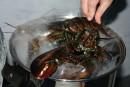 La Suisse interdit de plonger des homards vivants dans l'eau bouillante