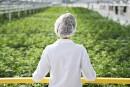 Légalisaton du cannabis: le Sénat ne doit pas retarder l'inévitable, dit Pratte