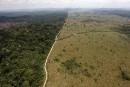 Le monde évalue l'ampleur de la «crise» de la biodiversité