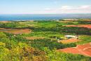 Wwoofing: dans les fermes des Maritimes