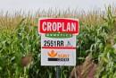 OGM: les Québécois plus inquiets que les autres Canadiens