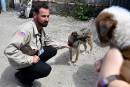 UKRAINE-CHERNOBYL-ANIMALS-STRAY-DOGS