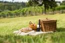 Cinq vins pour le pique-nique