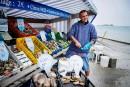 Saint-Malo: Cancale et ses huîtres