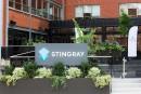 Acquisition majeure en Europe pour Stingray