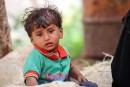 Yémen: environ 10 000 morts et un drame humanitaire