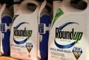 Herbicide Roundup: Monsanto condamné à payer 289millions