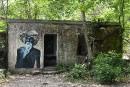 En Inde, l'ashram des Beatles renaît auprès destouristes