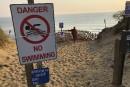 Deux plages de Cape Cod fermées à cause des requins