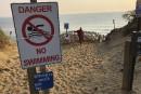 Requins: fermeture jusqu'à nouvel ordre d'une plage à Cape Cod