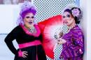 Drag-queens: barbe et paillettes