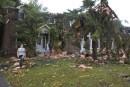 La tornade fait des blessés à Gatineau et à Ottawa
