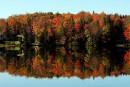 Suivre les couleurs d'automne à la trace