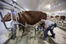 AEUMC: Legault n'a pas rencontré les producteurs de lait