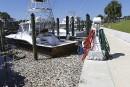 Une marée d'algues toxiques se répand sur les côtes de la Floride