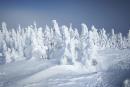 Paradis de la neige