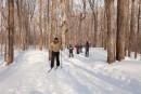 Redécouvrir les plaisirs de la neige grâce aux sports d'hiver