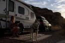 Sept mois sur la route avec chien et chat