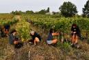 Les ventes de Bordeaux en recul en 2018