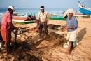Le Kerala: l'Inde pour les débutants
