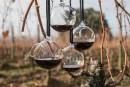 La Cité du vin de Bordeaux célèbre le flacon