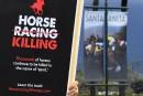 Hippisme: mort d'un 22e cheval en moins de trois mois, près de Los Angeles