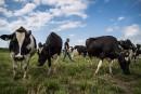 Budget: compensation de 4milliards pour les producteurs agricoles