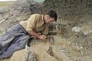 Des fossiles racontent le jour où un astéroïde a changé la Terre