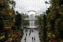 L'aéroport de Singapour veut attirer les voyageurs avec la nature sous dôme