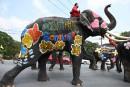 Des éléphants éclabousseurs pour la fête de l'eau en Thaïlande