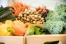 Changements climatiques: quel avenir pour notre alimentation?