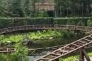 Découvrez la nouvelle attraction du parc Harry Potter