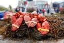 Un présumé voleur de homards invoque l'arrêt Jordan
