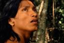 Le chant de la forêt: une lente disparition ★★★