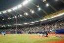 Les Blue Jays ne viendront pas à Montréal en 2020