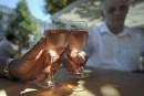 Menaces américaines: les viticulteurs de Provence visent de nouveaux marchés