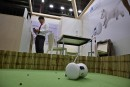 Toilettes connectées et robots pour animaux domestiques à l'IFA de Berlin