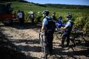 Les gendarmes traquent les voleurs de raisin en Bourgogne