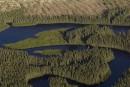 Québec permettra plus de coupes forestières pour réduire les GES