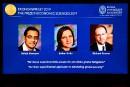 Le Nobel d'économie à un trio pour ses travaux sur la pauvreté