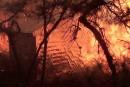 Des couvertures pour se protéger des incendies de forêt