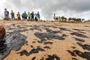 Une des plus belles plages du Brésil souillée par le pétrole
